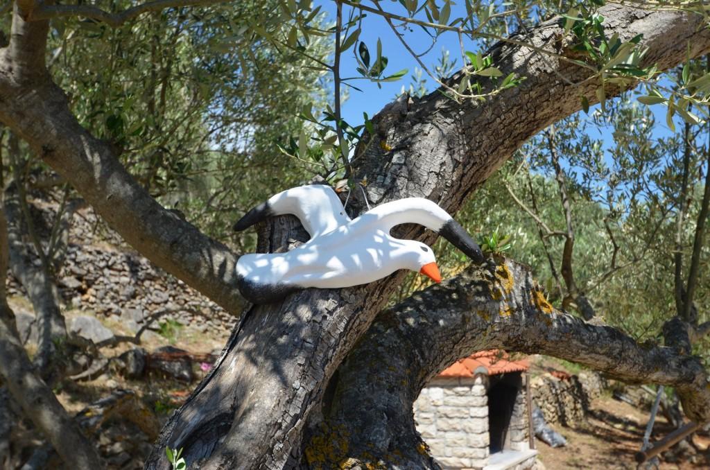 korcula-velaluka-holidayhome-paradise-topfloor-gardens-02
