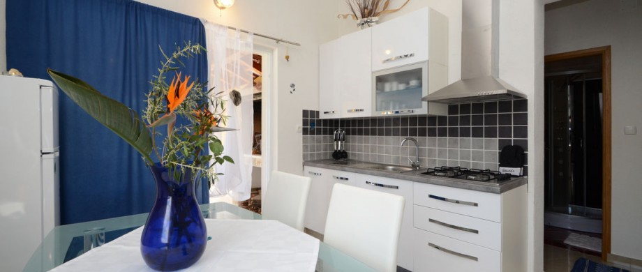 paradise-vela-luka-house-for-rent-kitchen-16