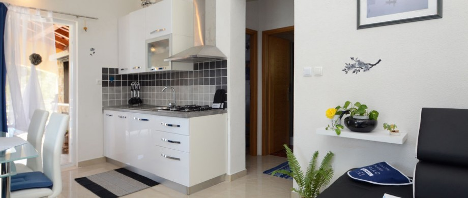 paradise-vela-luka-house-for-rent-kitchen-19